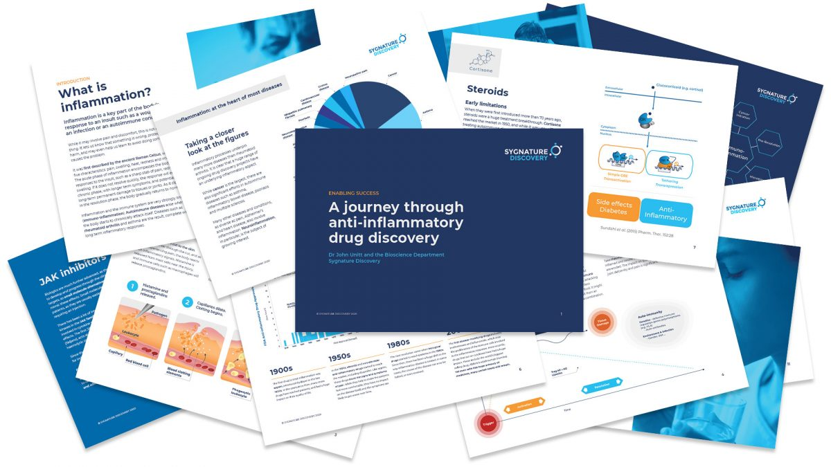 New ebook on anti-inflammatory drug discovery research